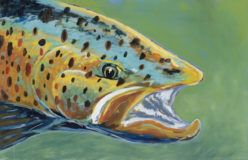 Green Trout
